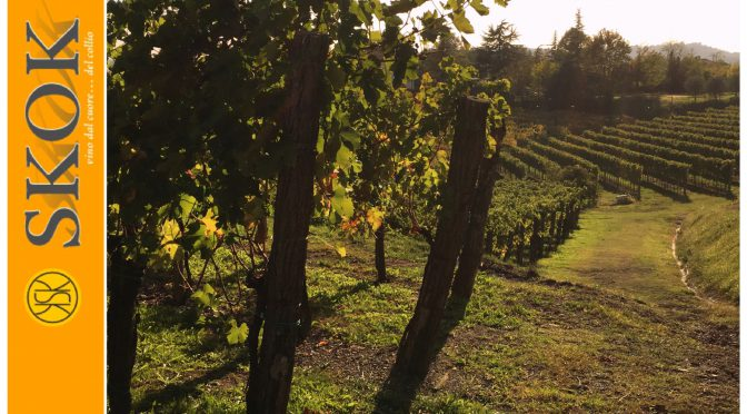 From Collio, with Love…